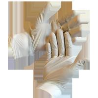 Examination Gloves - Latex
