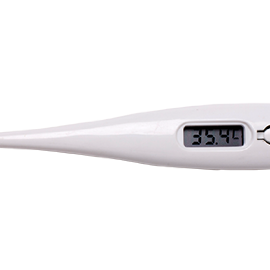 Thermometer - Digital_large